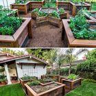 Raised Vegetable Garden Pinterest Account