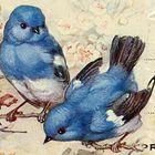 BlueRidgeDigitals Pinterest Account