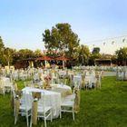 backyard wedding instagram Account