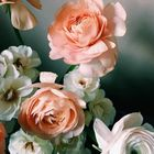 Created Beautifully Pinterest Account