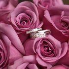 WeddingDesigns2Love.etsy.com Pinterest Account