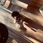 Dagne Tendle instagram Account