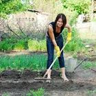 Garden ideas Pinterest Account
