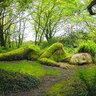 Sage Gardens