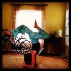 Marissa Soto instagram Account