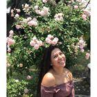 Brenda Hdz Pinterest Account