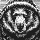 Bearandson Pinterest Account