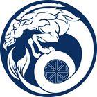 FAUNA metals's Pinterest Account Avatar