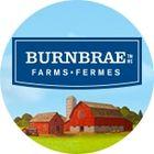 Burnbrae Farms's Pinterest Account Avatar