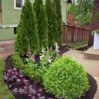 Big Bad Rock Front Yards     Pinterest Account