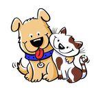Super Cat And Dog Pinterest Account