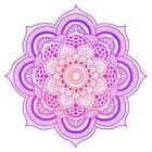 Colors of India  Studio Pinterest Account