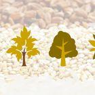 Little Seeds Designs Pinterest Account