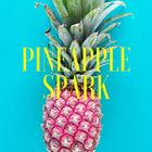 Pineapple Spark Shop Pinterest Account