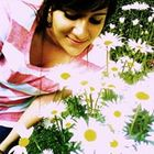 Soph' El Boukili Pinterest Account