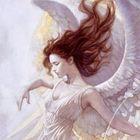Fernanda Pinterest Account