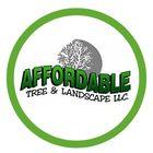 Affordable Tree & Landscape Pinterest Account