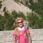 Carolyn Porter Pinterest Account