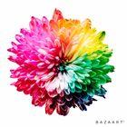 color_me_happy7 instagram Account