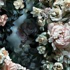 Maria Loya Pinterest Account
