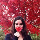 Paige Carl Pinterest Account