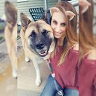 Sara Whipple Pinterest Account