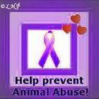 Karen Frazier Pinterest Account