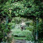 Home & Garden by Wolf Castro Pinterest Account