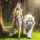 A.R.Tiger Pinterest Account