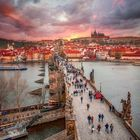 Dalia Dalrymple Pinterest Account
