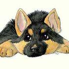 Aubrey Schaller instagram Account