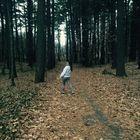 Jessica McNiff Pinterest Account