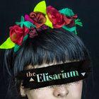 Elisa Bruno Pinterest Account