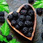 blackberry Pinterest Account