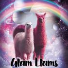 Glam Llams instagram Account
