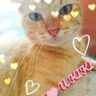 MaKa Rosado Pinterest Account