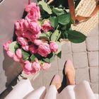 🌺 nina 🌸 Pinterest Account