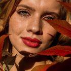 Vanessa Fedjukowa Pinterest Account