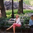 Laura Nagle Pinterest Account