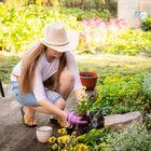 Womens Homestead Gardening Pinterest Account