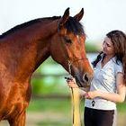 Horse Lovers Online