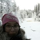 Ida Lidström Pinterest Account