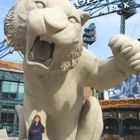Lisa Piscopink-Goss Pinterest Account