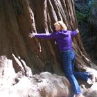 Kristine Hall's Pinterest Account Avatar