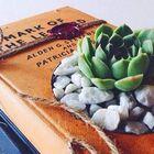 Veşiiredebiyat instagram Account