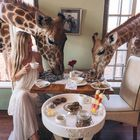 Travel & Entertainment instagram Account
