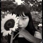 Tong Lai Ying Pinterest Account