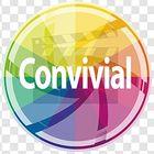 Convivial Studio Pinterest Account