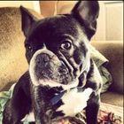 Rebecca Ashby instagram Account