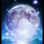 달 보름 Pinterest Account